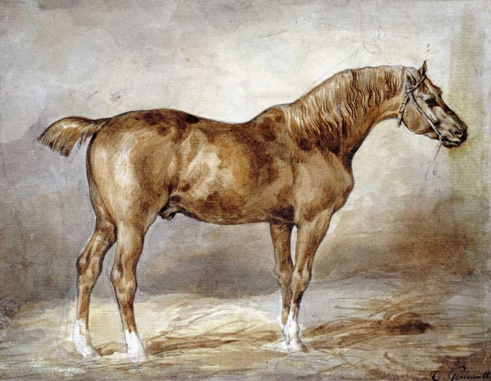 Cheval a LEcurie Gericault, Theodore 89590