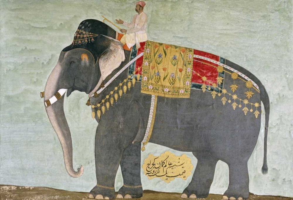 Portrait of The Elephant Alam-Guman Gajraj Mughal 89846