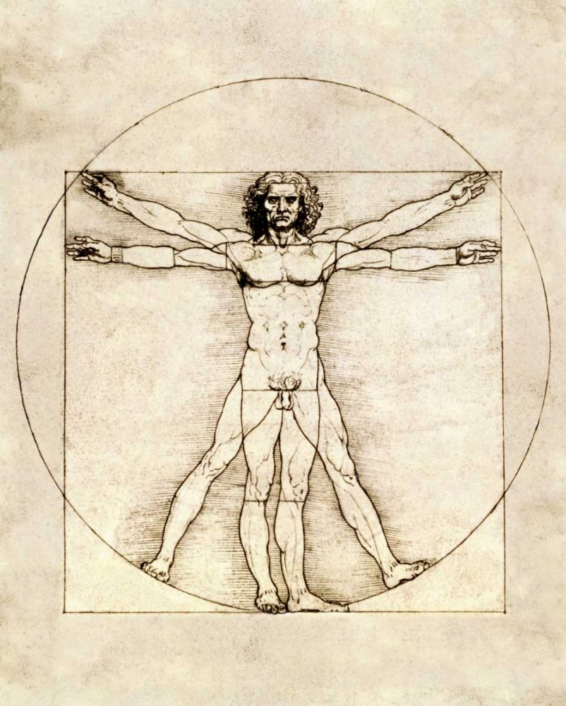 Proportions of the Human Figure - Vitruvian Man Da Vinci, Leonardo 90923