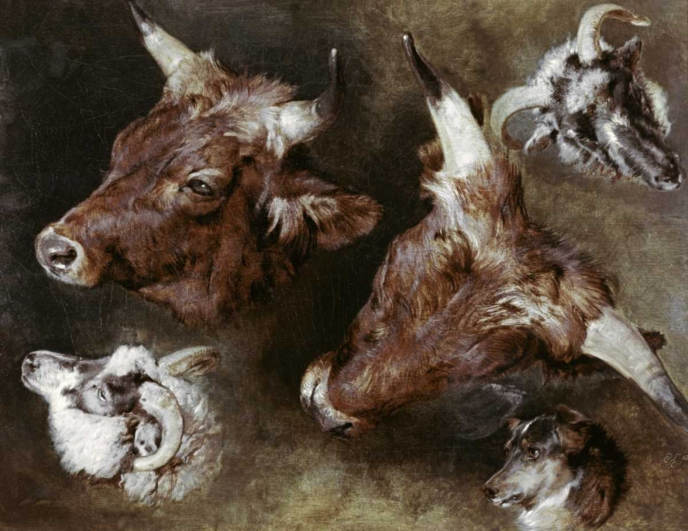 Heads of Sheep and Cattle Landseer, Sir Edwin 91198