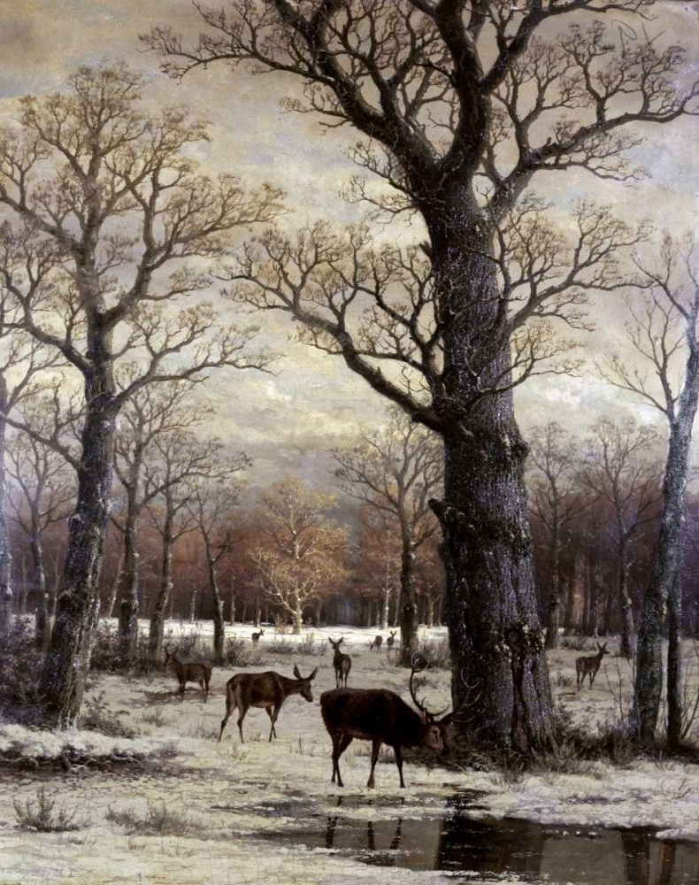 Deer Foraging, Winter Unknown 91716