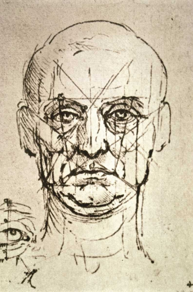 Proportions of the Face Da Vinci, Leonardo 91945