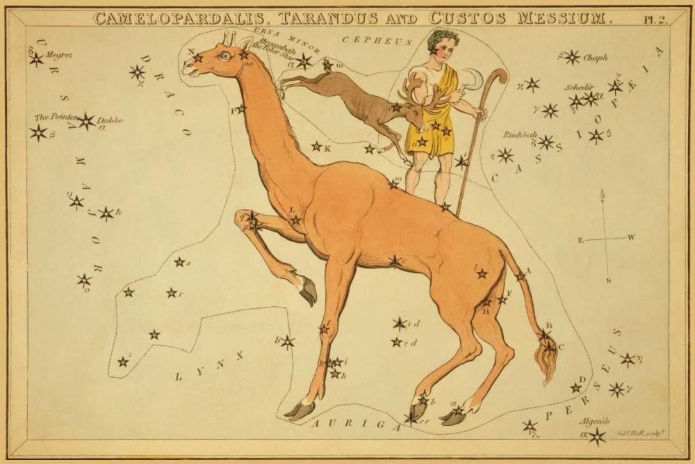 Camelopardalis, Tarandus and Custos Messium, 1825 Aspin, Jehoshaphat 96281