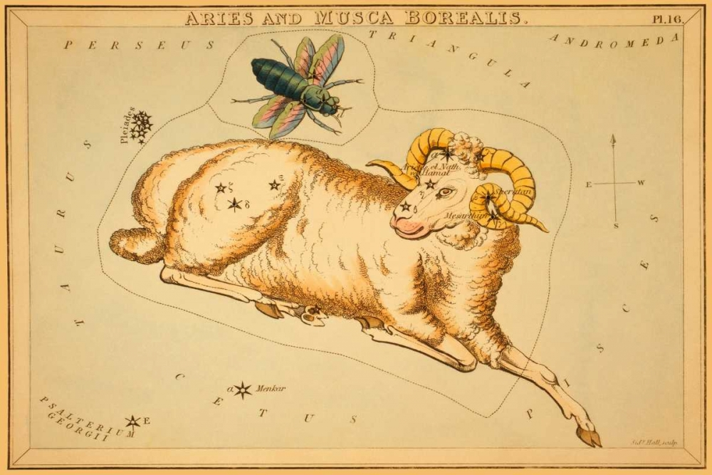 Aries and Musca Borealis, 1825 Aspin, Jehoshaphat 96293