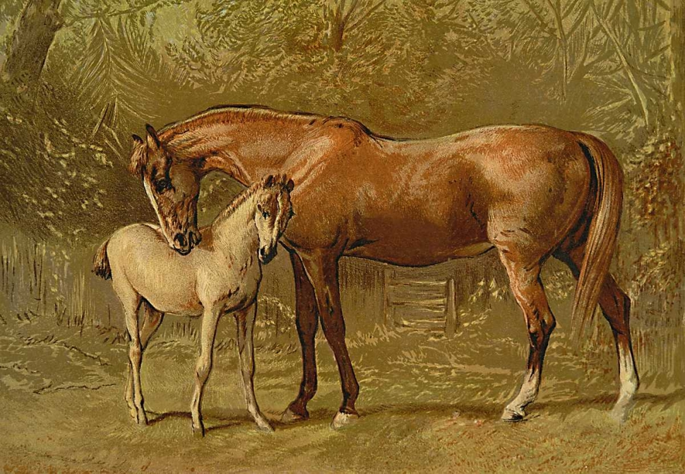 Thoroughbred Mare and Foal, 1900 Sidney, Samuel 93855