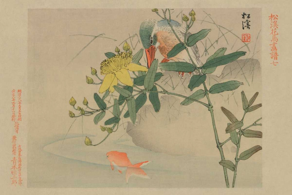 Kingfisher and Goldfish in Pond Unknown 96614