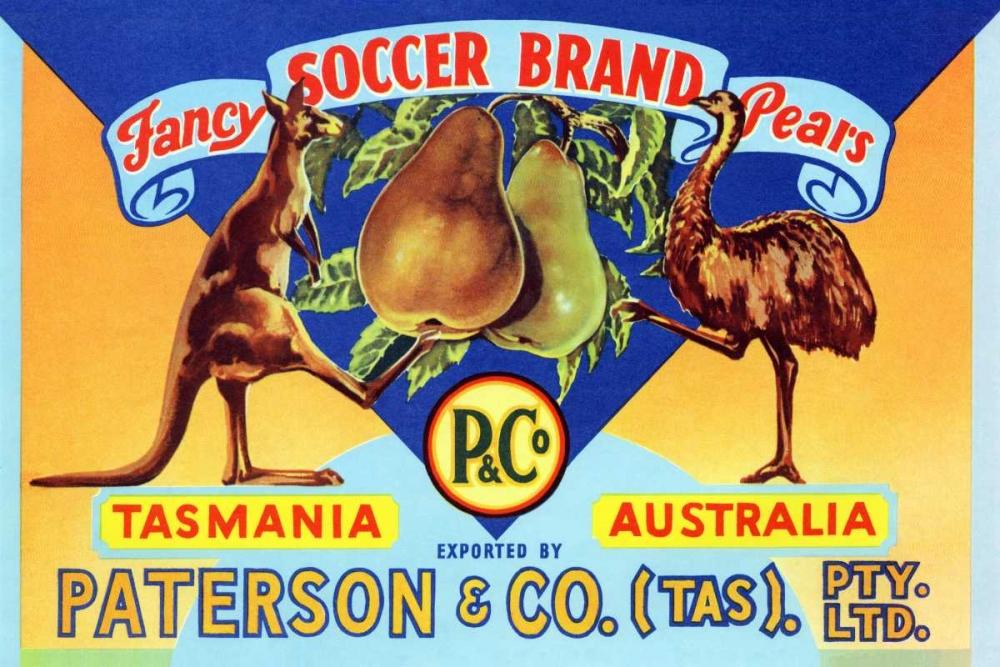 Fancy Soccer Brand Pears Unknown 96702