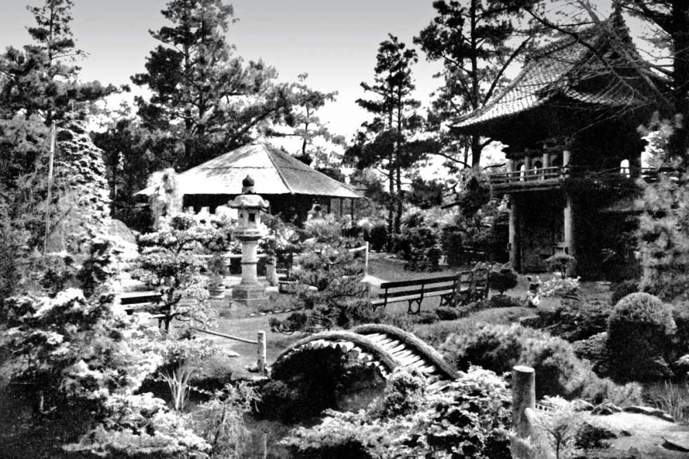 Oriental Tea Garden, San Francisco, CA Vintage San Francisco 97072
