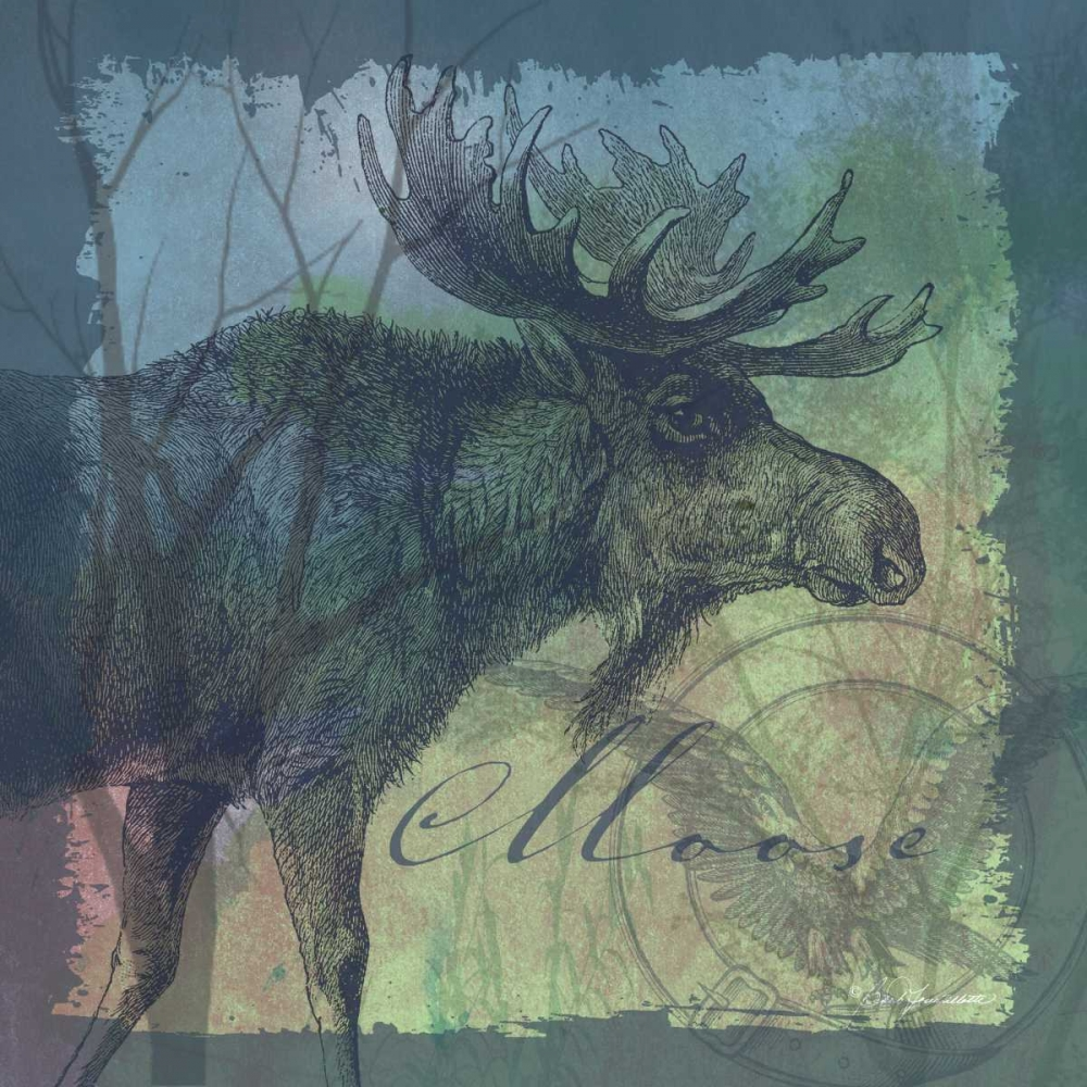 Moose Tourtillotte, Barb 124743