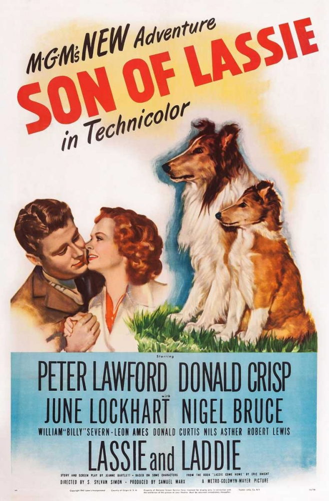 SON OF LASSIE Everett Collection 116734