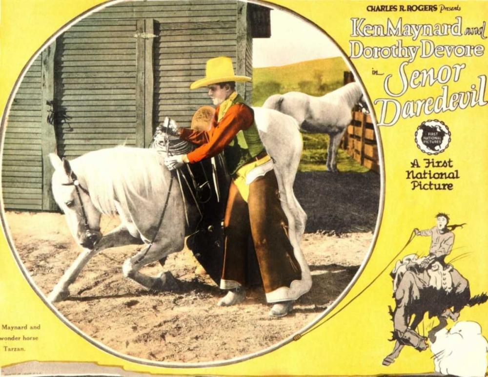 SENOR DAREDEVIL Everett Collection 108654