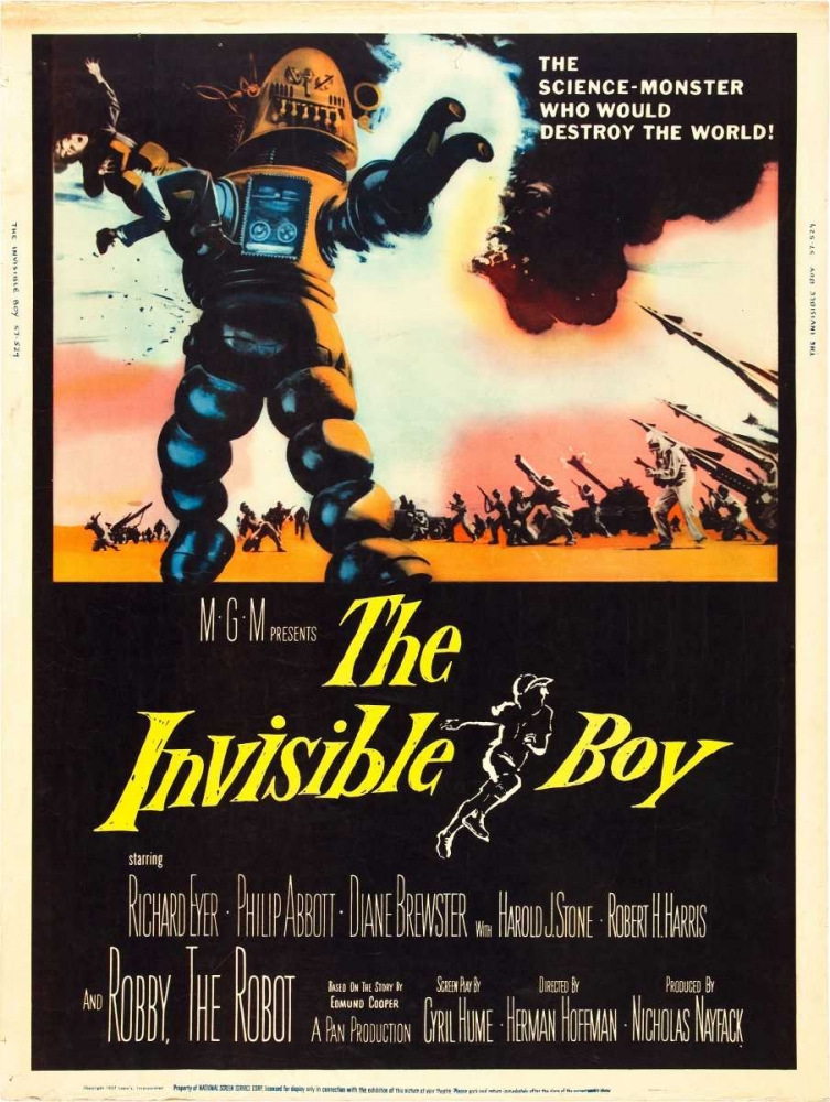 THE INVISIBLE BOY Everett Collection 114119