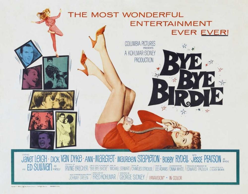 BYE BYE BIRDIE Everett Collection 114556