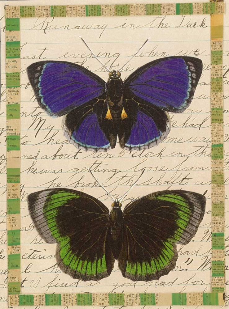 Butterfly Collage, Runaway Gould-Porter, William 119291