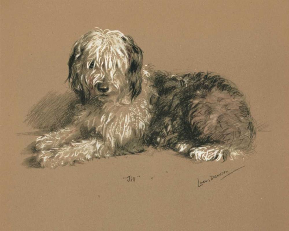 Sheepdog, Jill Dawson, Lucy 119367