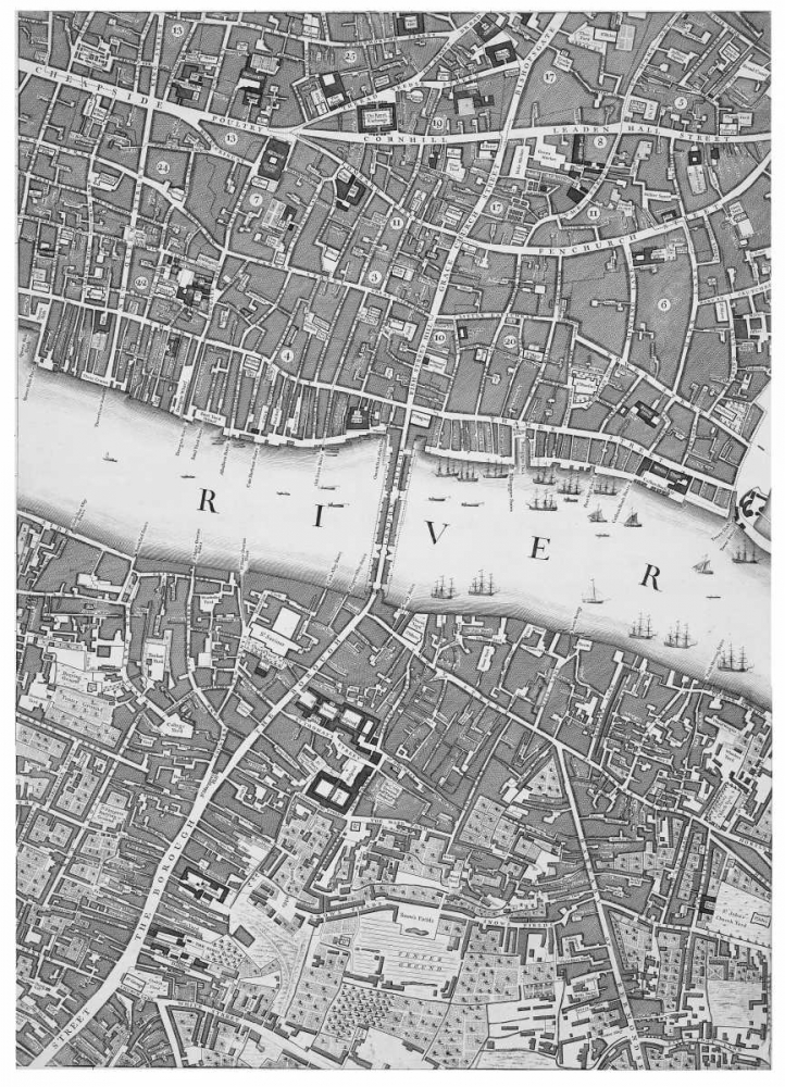 Roque Sectional map of London 1748 Roque, John 120361