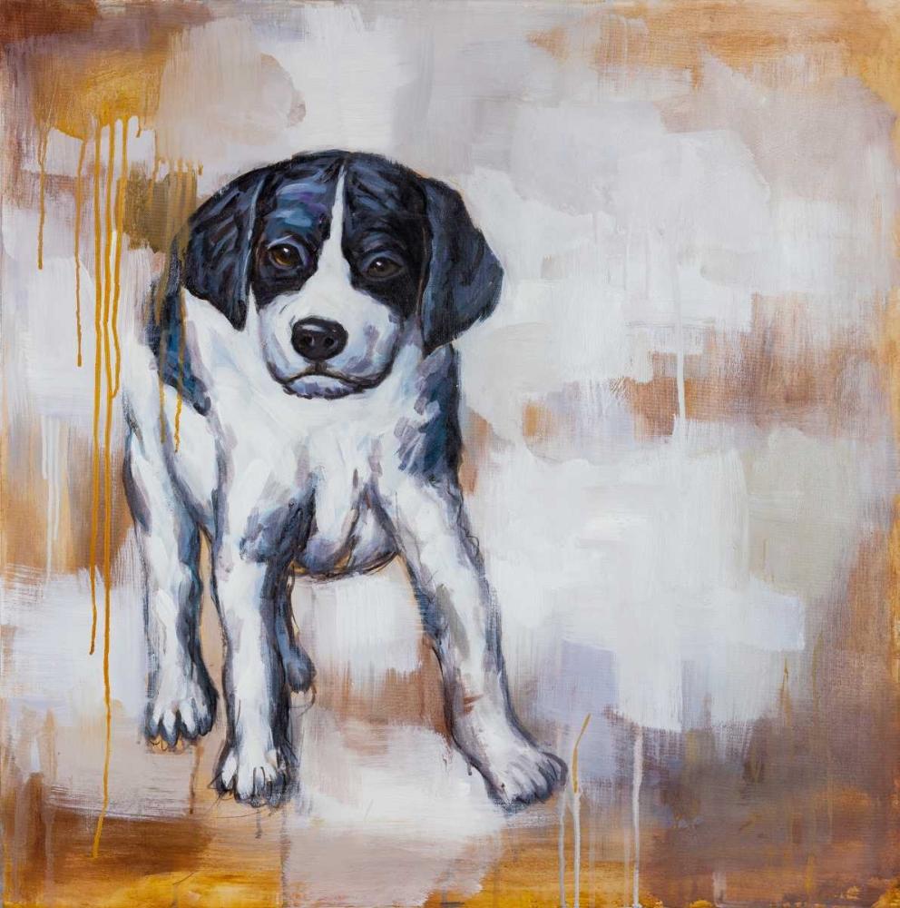 Curious Puppy Dog Atelier B Art Studio 150812