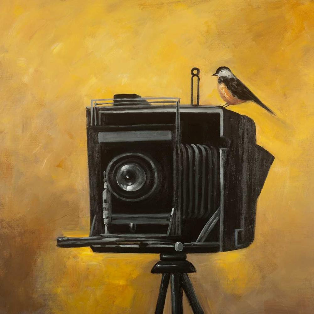Old Camera with Bird Atelier B Art Studio 150820