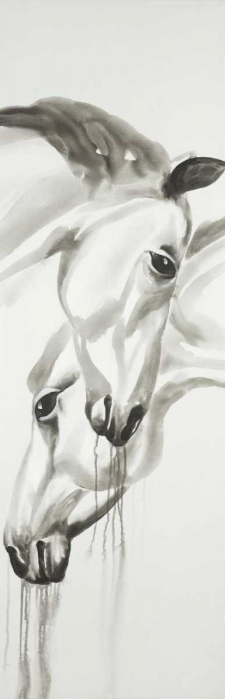 Black and White Horses Atelier B Art Studio 150833