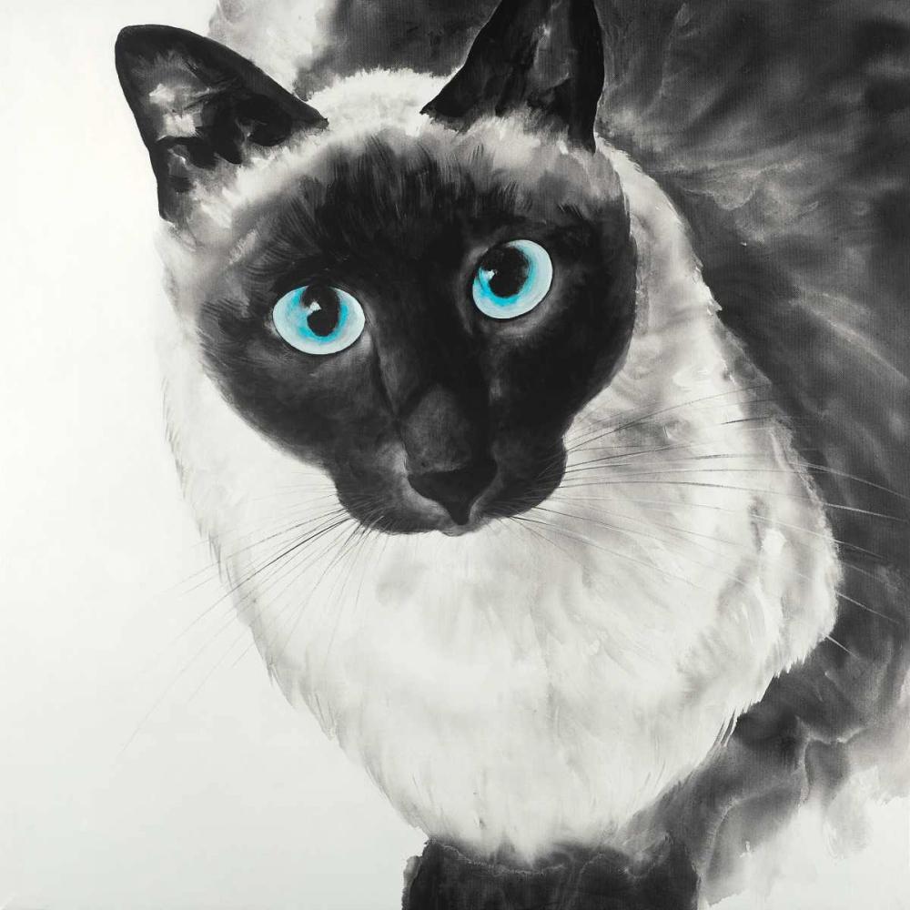 Blue Eyes Siamese Cat Atelier B Art Studio 150838