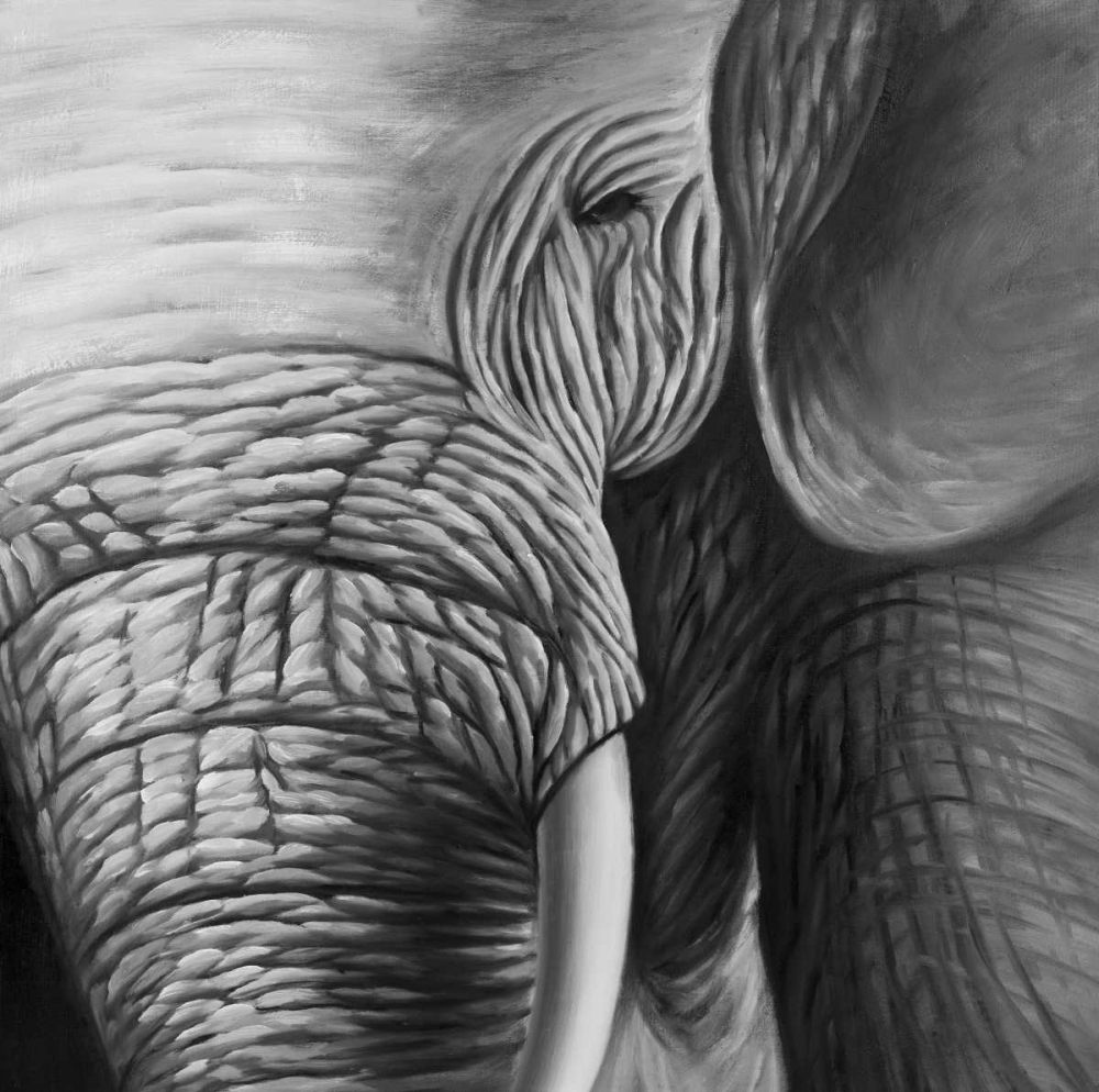 Elephants Atelier B Art Studio 150850