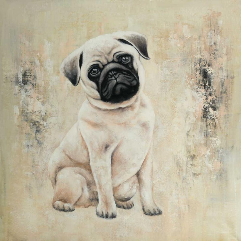 Small Pug Atelier B Art Studio 150862