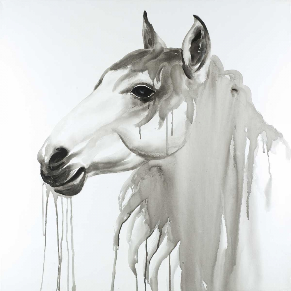 Beautiful White Horse Atelier B Art Studio 163004