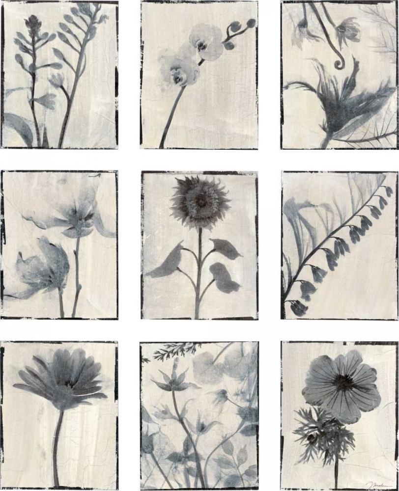 Silk Botanicals jardine, Liz 158120