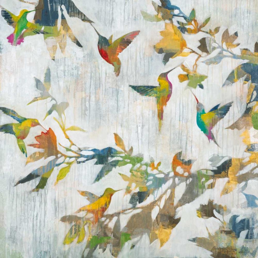 Aerial Dance jardine, Liz 158220